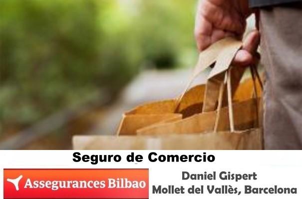 Su agencia de seguros en Mollet del Vallès, Barcelona, Seguro Comercio Mollet,Assegurances Bilbao Mollet