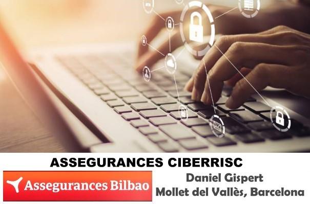 El Seguro de ciberriesgo de Assegurances Bilbao Mollet 2019 es importante